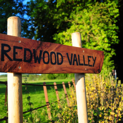 Welcome to Redwood Valley